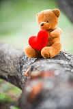 Bear doll Royalty Free Stock Image