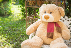 Bear doll sit on the chair, blur garden and sunshine backgro Royalty Free Stock Images