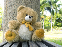Bear doll sit on the seat Royalty Free Stock Images