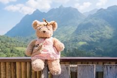Bear doll sitting and relax in the morning time Royalty Free Stock Photo
