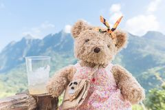 Bear doll sitting and relax in the morning time Stock Photos
