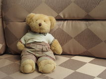 The Bear Doll Stock Photo