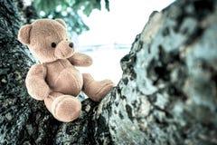 Bear doll Stock Photo