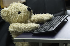 Bear doll work on wireless keyboard Royalty Free Stock Photography