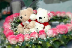 Bear dolls. Heart-shaped Rose around the doll bears Royalty Free Stock Photos