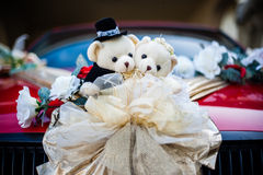Bear dolls Royalty Free Stock Image