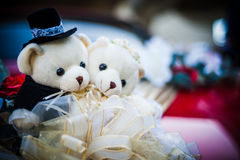 Bear dolls Stock Images