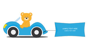 Bear driving a car Stock Images