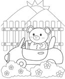 Bear driving a car coloring page Royalty Free Stock Images