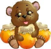 Bear eats honey Royalty Free Stock Photo