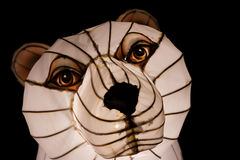 Bear face Royalty Free Stock Image