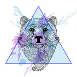 Bear face with bread in triangle frame with watercolor ink drop. Stock Photos