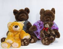 Bear family. This is a photo of a toy bear family, with mother, father, teen and baby bear Stock Image