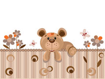 Bear on the fence Royalty Free Stock Images