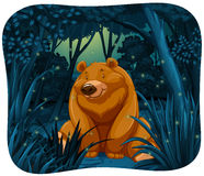 Bear and fireflies. Cute bear surrounded by fireflies in the jungle at night Royalty Free Stock Image