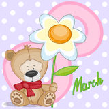 Bear with flower Stock Images