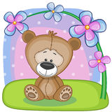Bear with flowers Stock Image