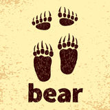 Bear footprints, front and hind paws. Royalty Free Stock Image