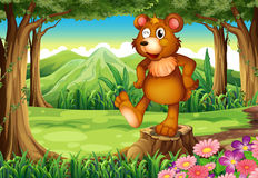 A bear at the forest standing above the stump vector illustration