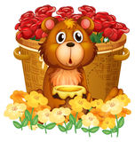 A bear in front of the basket with red roses Royalty Free Stock Images