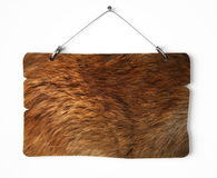 Bear fur notice board. Isolated on white a white background Royalty Free Stock Images