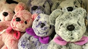 Bear gang. Soft toy pastel coloyr bear doll Royalty Free Stock Images