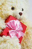 Bear with a gift box Royalty Free Stock Image