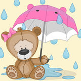 Bear girl with umbrella Stock Image