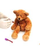 Bear giving blood Stock Photos