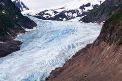 Bear Glacier Stock Image
