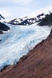 Bear Glacier Royalty Free Stock Images