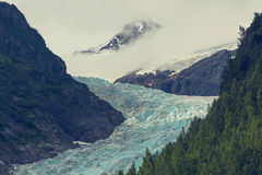 Bear glacier Royalty Free Stock Photo