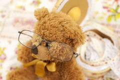 Bear with Glasses Royalty Free Stock Image