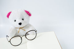 Bear and glasses on opened notebook in white background Stock Photo
