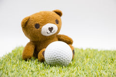 Bear and Golf with love letter on white background Stock Images