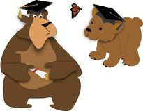 Bear Graduates. Bear facts on graduating, the young and the old.. Life begins today.. go forward as you have only just begun on a new adventure Stock Photos
