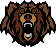 Bear Grizzly Mascot Head Vector Graphic Royalty Free Stock Photography