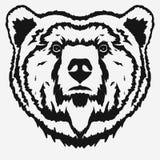 Bear head cartoon vector Royalty Free Stock Images