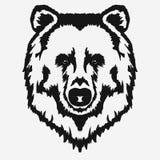 Bear head cartoon vector Royalty Free Stock Photo