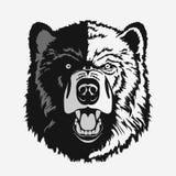 Bear head cartoon vector Royalty Free Stock Image