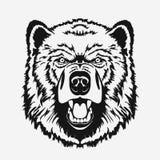 Bear head cartoon vector Stock Images