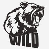 Bear head cartoon vector Stock Photography