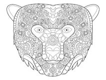 Bear head coloring vector for adults Royalty Free Stock Photo