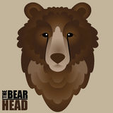 Bear Head Stock Images
