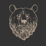 Bear Head Logo Royalty Free Stock Photography