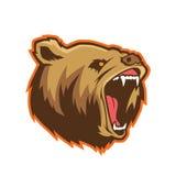 Bear head mascot Stock Photo