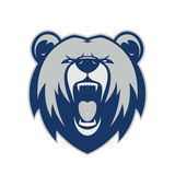 Bear head mascot Royalty Free Stock Photo