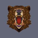 Bear head polygon geometric, Vector illustration Royalty Free Stock Image