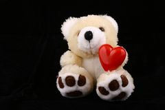 Bear with heart Stock Photography
