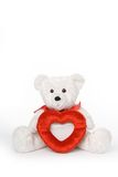 Bear with Heart Frame. White teddy bear holding heart shaped picture frame with room on top for text royalty free stock image